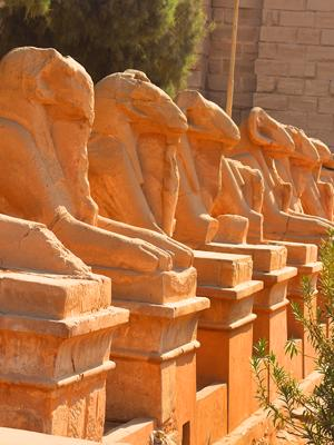 Family tour package for 5 Days to Explore Cairo, Giza & Luxor