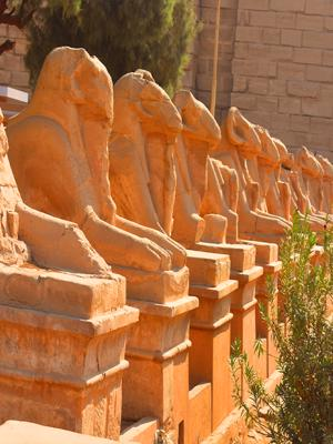 Visit Giza, Luxor, Abu Simbel and Cairo in 6 Days & 5 Nights
